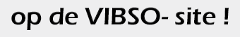 vibso-site.png